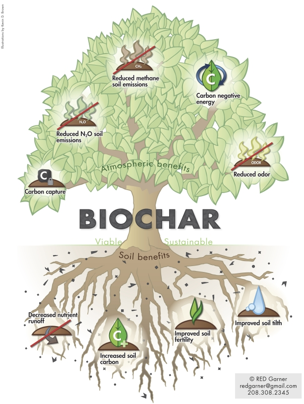Biochar_Tree_-_full_size Red Garner Biochar-international
